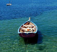 Apollo Bay by Charlotte Pridding