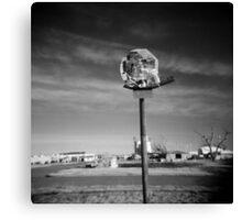 Basketball Net Survivor Canvas Print