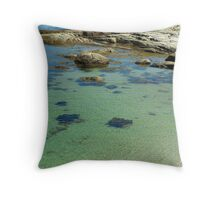 Ripples in the Tide Throw Pillow