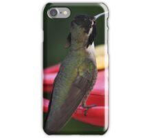 BEAUTIFUL MALE WHITE EARED HUMMINGBIRD SITTING ON FEEDER PERCH iPhone Case/Skin