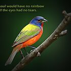 The soul would have no rainbow . . . by Bonnie T.  Barry