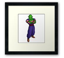 Piccolo Framed Print