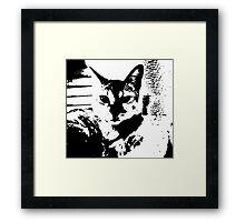 Queen Zola Savannah Framed Print