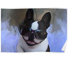Cool Shades Poster