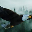 Misty Mountain Eagle by Cliff Vestergaard