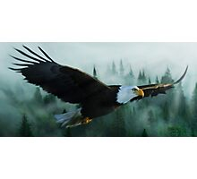 Misty Mountain Eagle Photographic Print