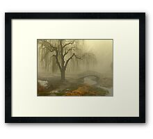 God's creation Framed Print
