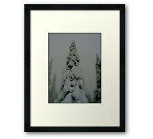 Weight of Winter Framed Print
