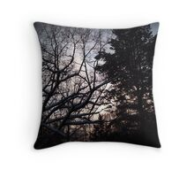 Michigan Winter Sunset  Throw Pillow
