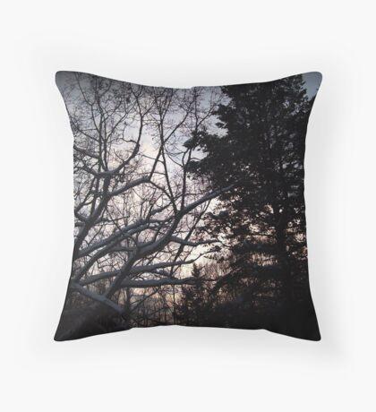 Michigan Winter Sunset  Throw Pillow