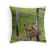 Kangaroos at Pambula Beach Throw Pillow