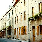 Old Quebec Street by Hena Tayeb