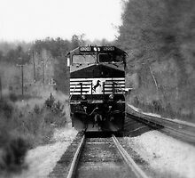 Train by Dan Casey Campbell