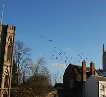 Bury St Edmunds by LucyAnnx