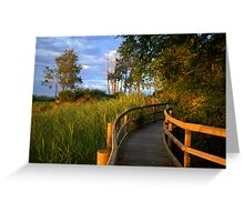 Manning River Sundown Greeting Card