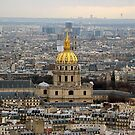 Dome of Les Invalides by Larissa  White Brown