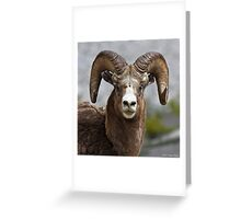 Don't be afraid to see what you see Greeting Card