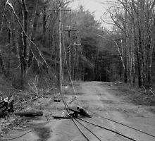 The Lines are Down: Ice Storm Series Monochrome by Rebecca Bryson