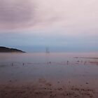 Tadoussac Harbor at Low Tide Sunset by hummingbirds