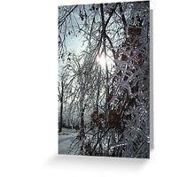 Frozen in Time: Literally Greeting Card