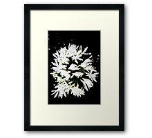 Garland of White Framed Print