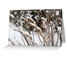 Holding Greeting Card