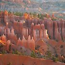 Sandstone castles in Bryce Canyon by loiteke