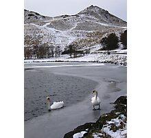 Swans on Dunsapie Loch Photographic Print