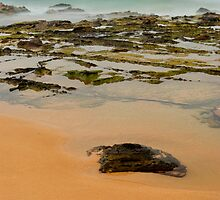 North Avoca Beach by Michael Little