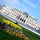 Belvedere Palace by MEV Photographs