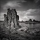 Mono Lake Tufa by Laura Ashburn