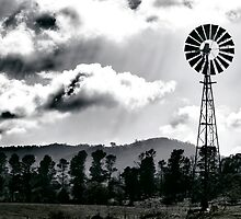 The Good Windmill by Damian Harding