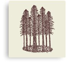 Cathedral Grove (Coastal Redwoods) Canvas Print