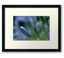 nature will bear the closest inspection Framed Print
