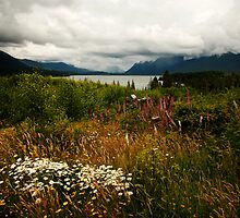 Lake Quinault at Rainy Day by Olga Zvereva