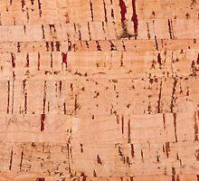 cork striped sheet texture abstract by Arletta Cwalina