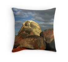 Lichen Covered Rocks Throw Pillow