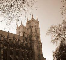 Westminster by Paul Finnegan