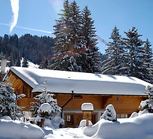 Chalet in winter by Riviera