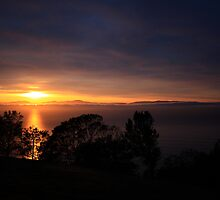 Sunrise, Frederick Henry Bay from Single Hill by David Jamrozik