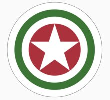 Abkhazian Air Force - Roundel Baby Tee