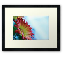 Red on Blue 2 Framed Print