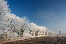 Stoke Frost 1 by SWEEPER