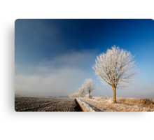 Stoke Frost 4 Canvas Print