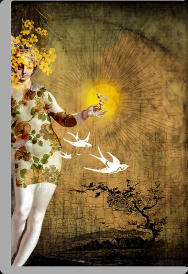 the sun by Catrin Welz-Stein