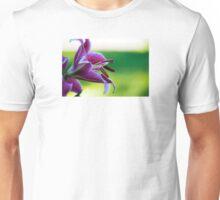 transcendent desire Unisex T-Shirt