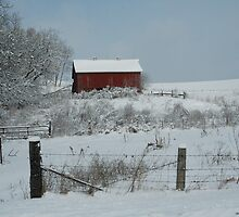 red barn by cynthia  brown