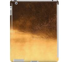 14.3.2015: Riverside Willows iPad Case/Skin
