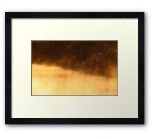 14.3.2015: Riverside Willows Framed Print