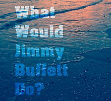 What would Jimmy Buffett do? by Edward Fielding